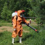 Уничтожение клещей и общая информация о насекомых для защиты близких